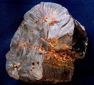 Foto Eurico Zimbres, Wikipedia.org Postava 2.Goethite, minerál oxidu železitého, obsahuje oxid uhličitý, když seformuje. Goethity vevrstvě Ordovik (pohřbené velmi brzy během potopy) ukazují svět, který měl patnáctkrát víceCO2ve své atmosféře, než dnes. Další studie ukazují, že toto bylo běžné vevrstvě Paleocén [Paleozoic] (první měsíce potopy).8