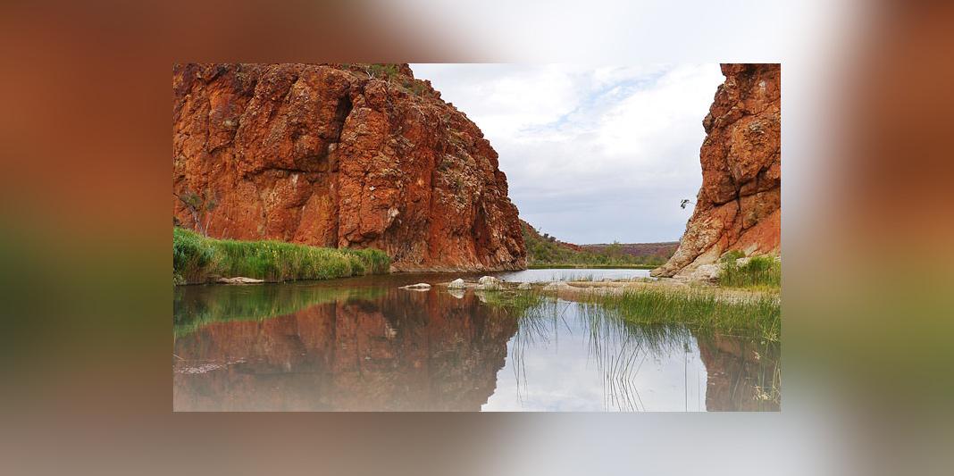 Voyage to the Terra Australia (roku.